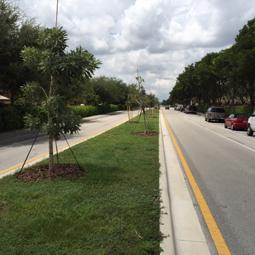 Doral Road